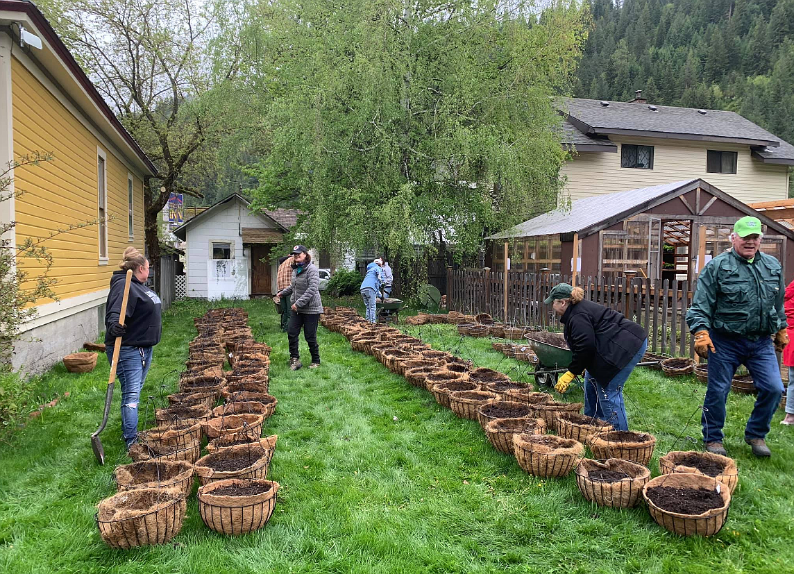 Wallace Flower Project volunteers prepare to place flowers in the pre-made hanging baskets on May 16. Project members assembled the hanging baskets the previous day.