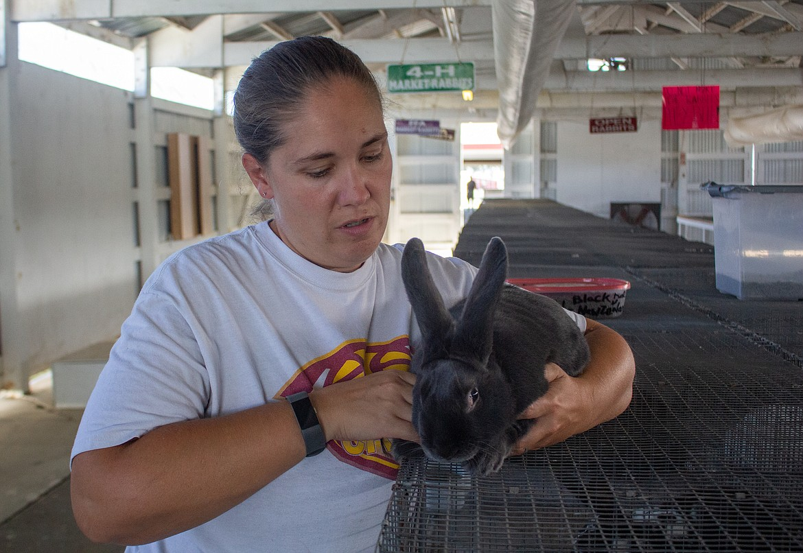 Liane Perkins, a barn superintendent and 4-H rabbit group supervisor, gently picks up one of the rabbits at the Grant County Fairgrounds for this week's livestock sale.