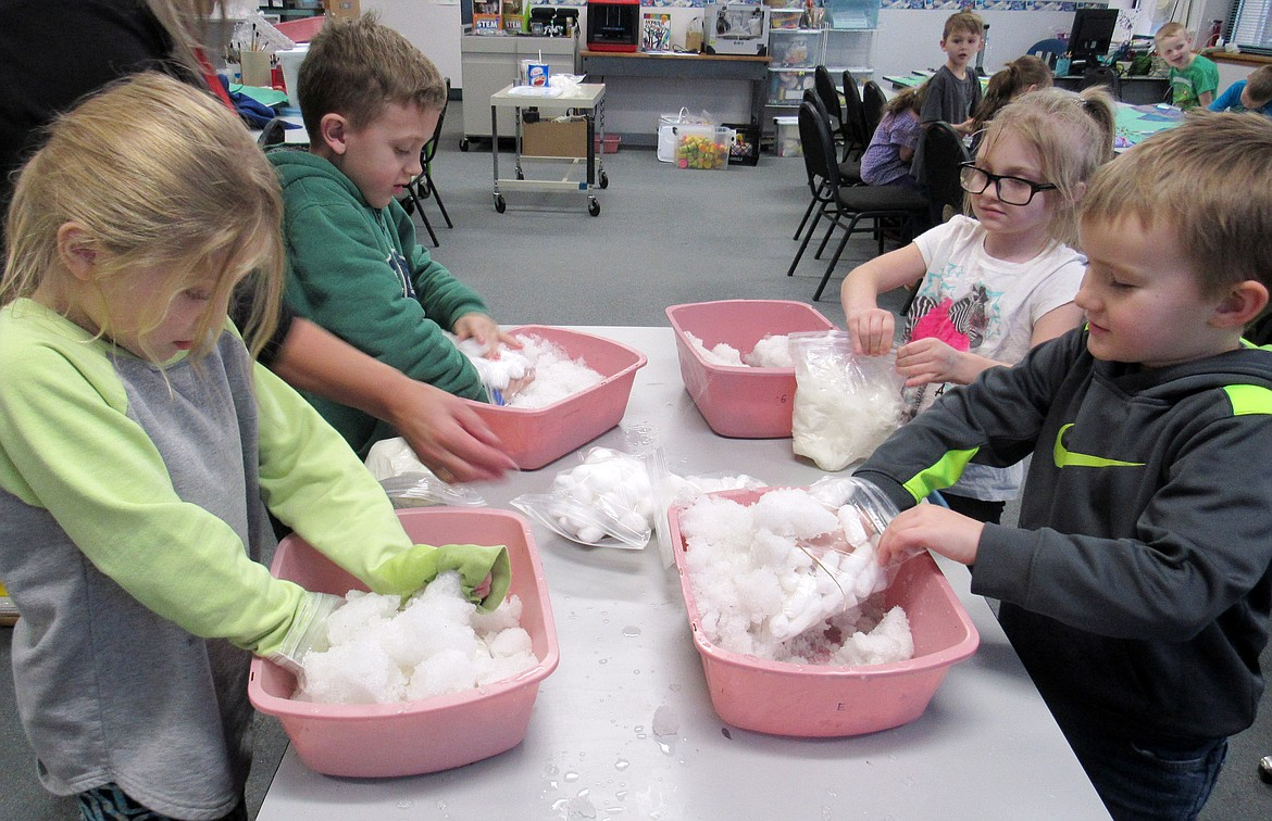 Idaho Hill Elementary first graders conduct an experiment on animal cold adaptation at a recent STEaM event at the school. The students used shortening as blubber and cotton balls as insulators as they conducted an experiment on how penguins keep warm in the cold.
