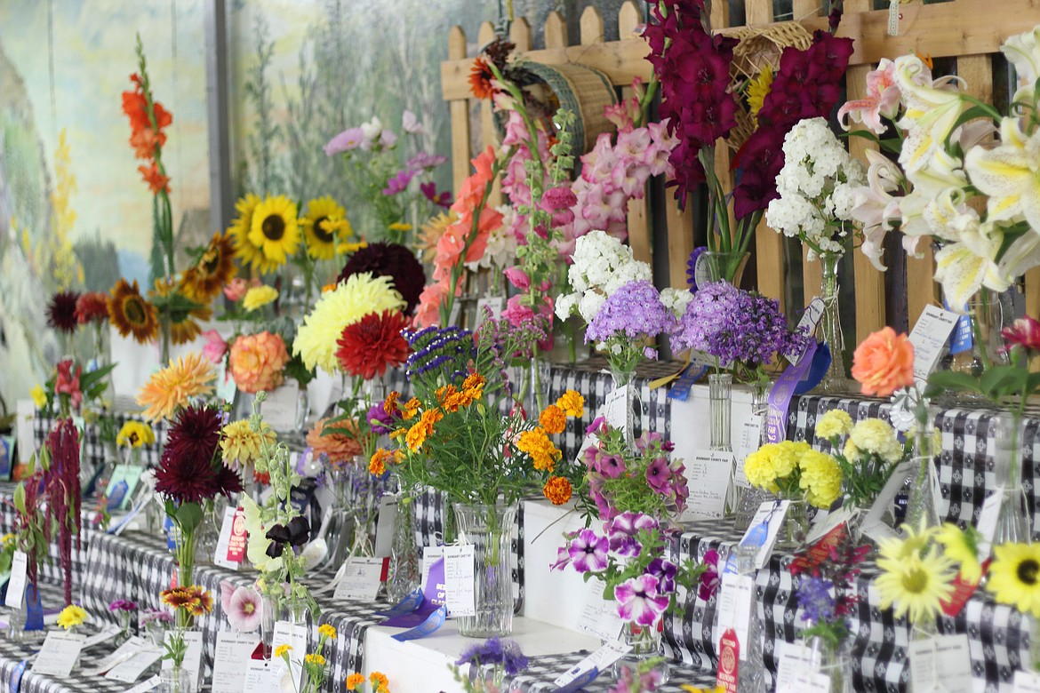 (Photo by VICTOR CORRAL MARTINEZ) Colorful flowers make for a fragrant and beautiful display at the Boundary County Fair last week.