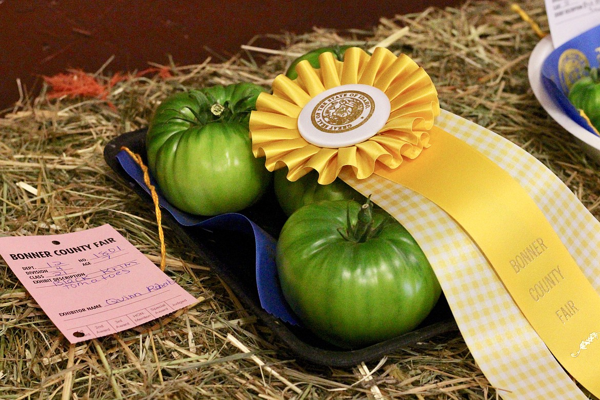 (Photo by HANNAH NEFF)   Best of Show winning Black Krim Tomatoes exhibited by Quinn Roberts, 7, at the Bonner County Fair Friday.