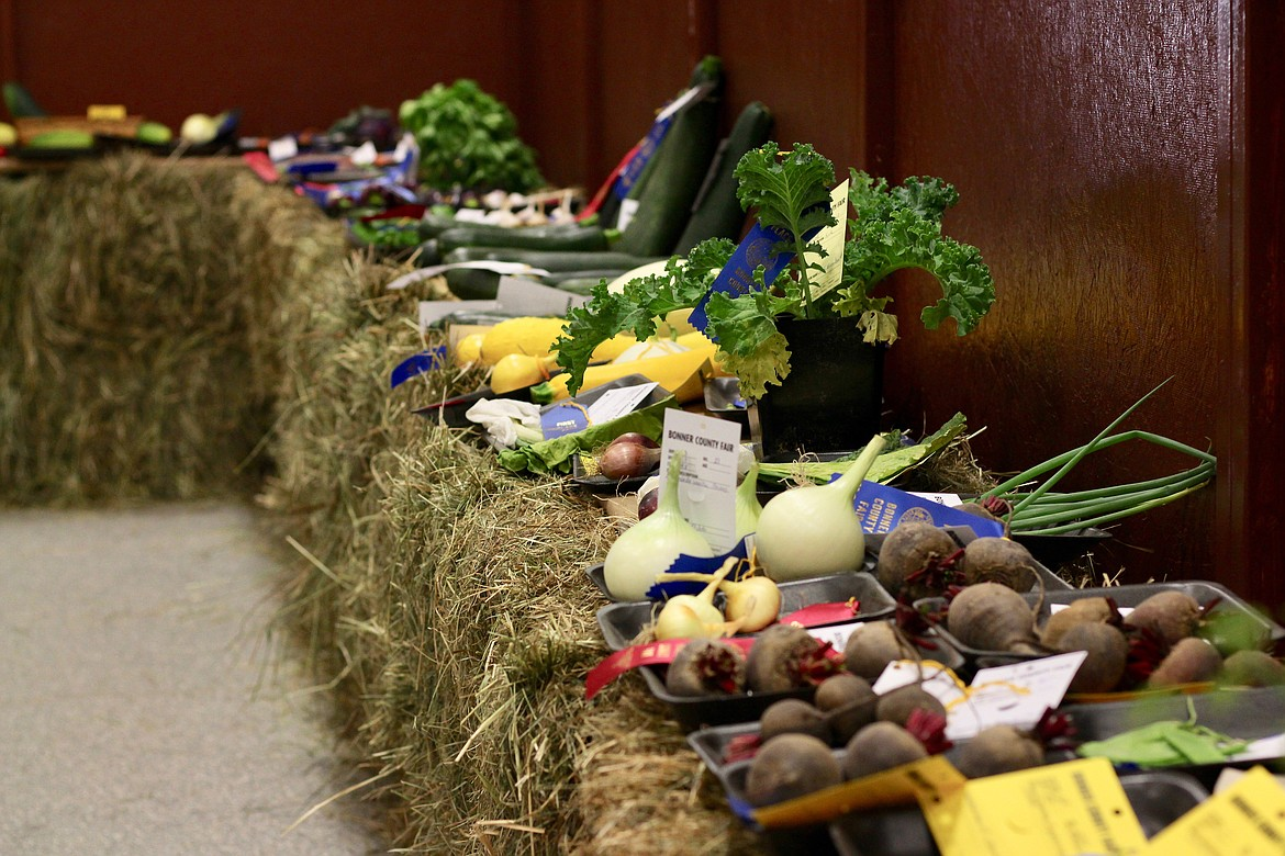 (Photo by HANNAH NEFF)   Produce lined up with their ribbons at the Bonner County Fairgrounds on Friday.