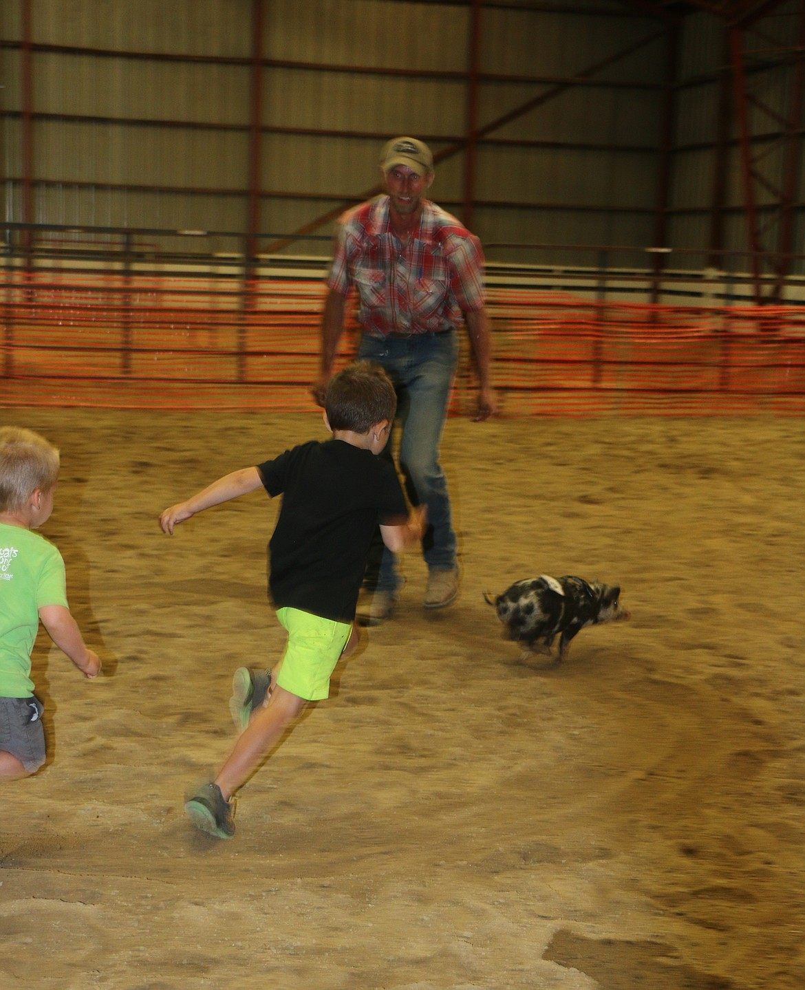 A young piglet runs away from a contestant during the annual pig scramble.