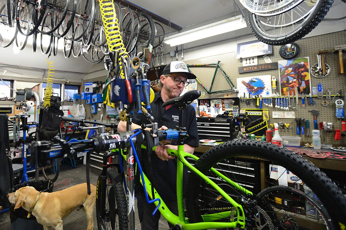 Pete Derrick, accompanied by shop dog Rooster, works on a bike at Wheaton's Cycle on March 8.