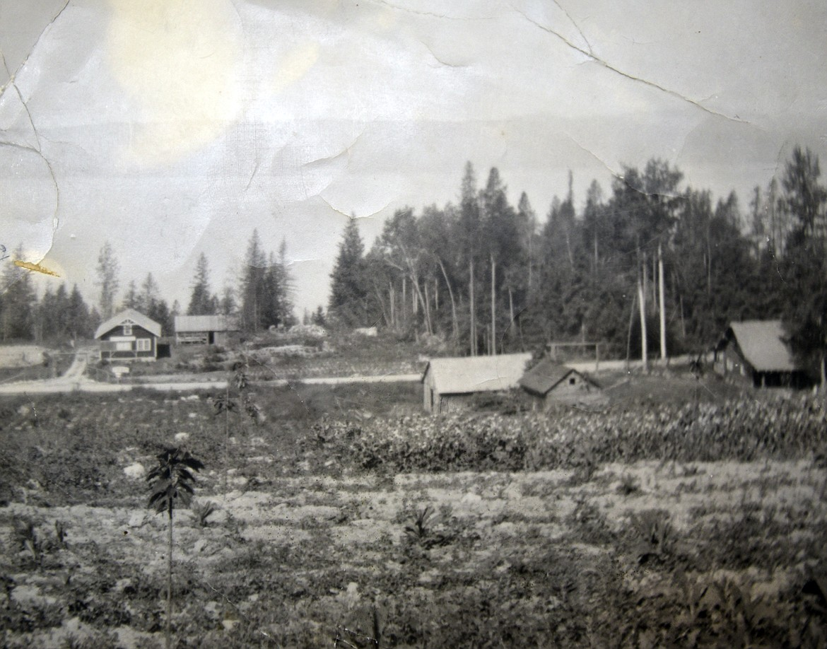 A photo of the early days of Bowman Orchards. (photo provided)