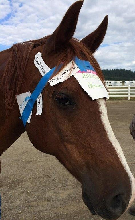 A horse models a client's anxiety-inducing thoughts as part of a therapy session.
