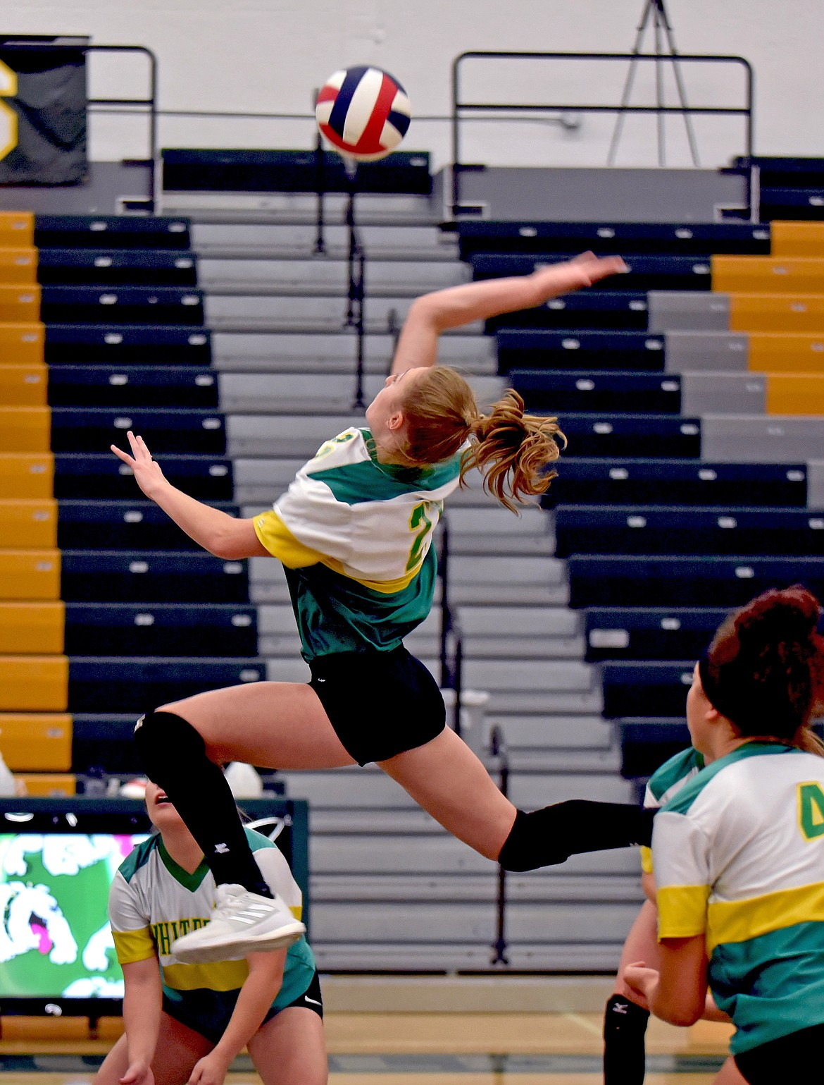 Whitefish freshman Brooke Zetooney lines up for a massive spike in the third set as Whitefish defeated Libby 3-0 in the Bulldogs Homecoming game on Thursday, Oct. 1. (Whitney England/Whitefish Pilot)