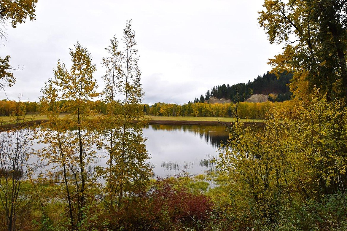 """Robert Kalberg captured this photo of the area's fall beauty during a recent """"adventure drive"""" on Lyons Den Road."""