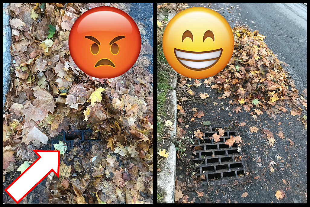 Be sure to clear leaves from storm drains and leave a 1 foot gap between the curb and leaf piles to allow for water flow.