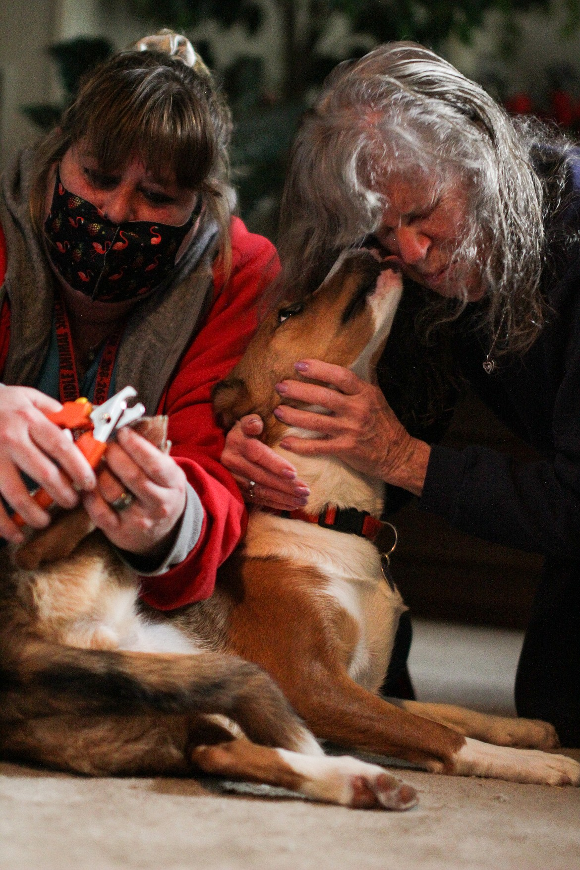 Cricket the dog licks her owner, Bobbe Komanec, while Kendra Dodge clips her nails Tuesday afternoon.