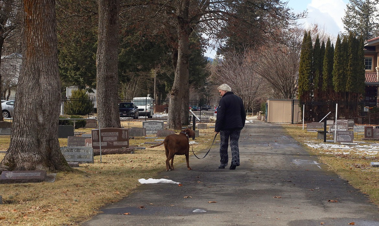 A person walks their dog through St. Thomas Cemetery on Tuesday.