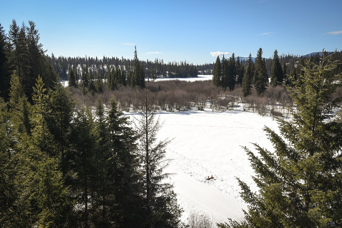A view across Dog Creek to Dog Lake from the deck of the lodge house at Dog Creek Lodge & Nordic Center in Olney on Wednesday. (Casey Kreider/Daily Inter Lake)
