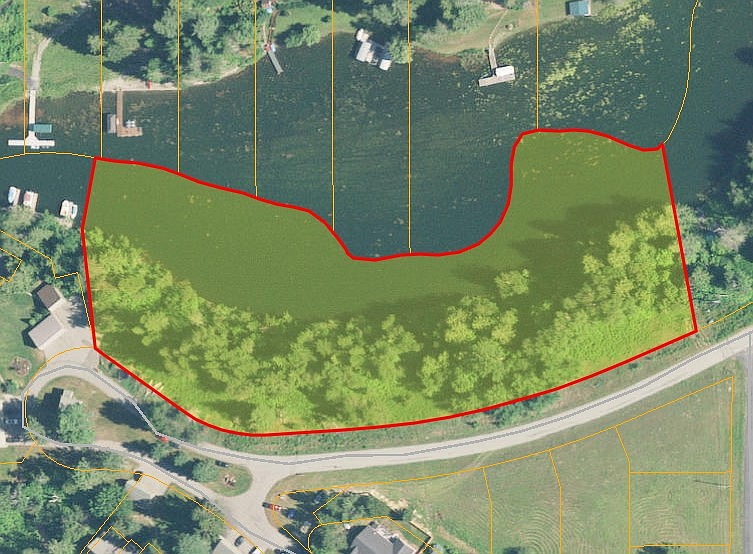 A screenshot from the Bonner County GIS map shows the site's previous vegetation.