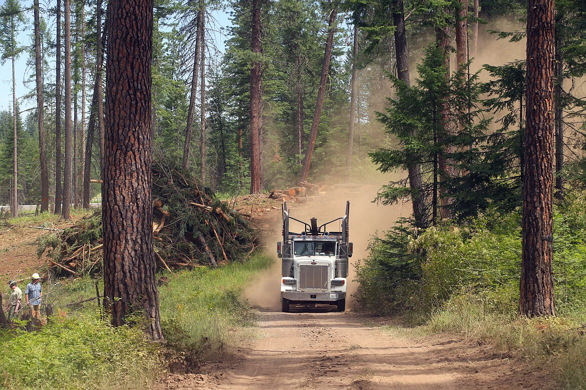 A logging truck rumbles down the road toward the logging operation at English Point on Wednesday.