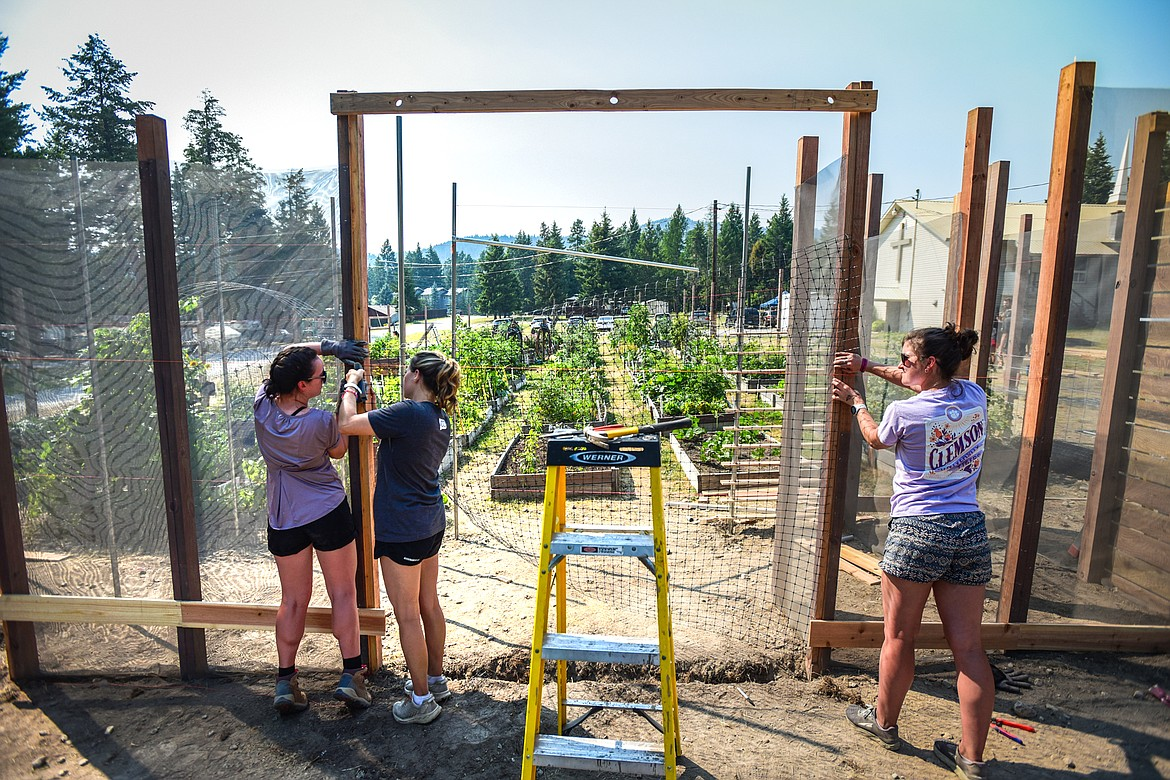 Architecture students, from left, Emma Gallaugher, from University of Virginia; Emma Schnelle, a graduate student at The University of Texas at Austin; and Katherine Harland, from Clemson University; secure a 7-foot, 6-inch high piece of deer netting to the arbor of the Lakeside Community Garden outside the Living Church at Lakeside on Friday, July 30. The three are part of 100 Fold Studios' summer internship program for architecture students interested in nonprofit careers. (Casey Kreider/Daily Inter Lake)