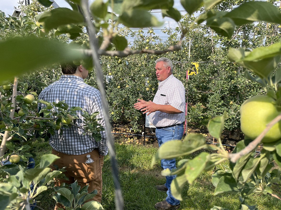 Karl Wirth, certified crop advisor with Houston-based agricultural sensor maker Dynamax, talks about the sap flow and soil moisture sensors his company has installed in innov8.ag's Smart Orchard near Grandview.