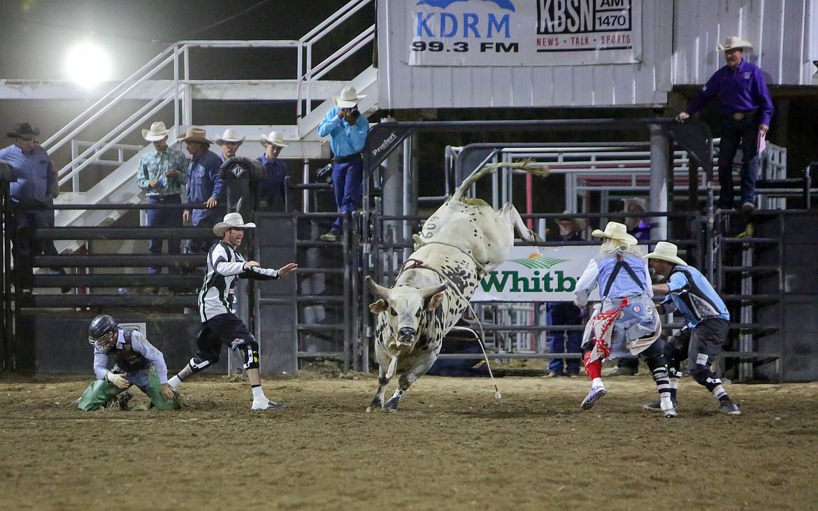 Barrel men try to contain the bull after it bucked its rider during the bull riding event on Saturday night at the Moses Lake Roundup Rodeo.