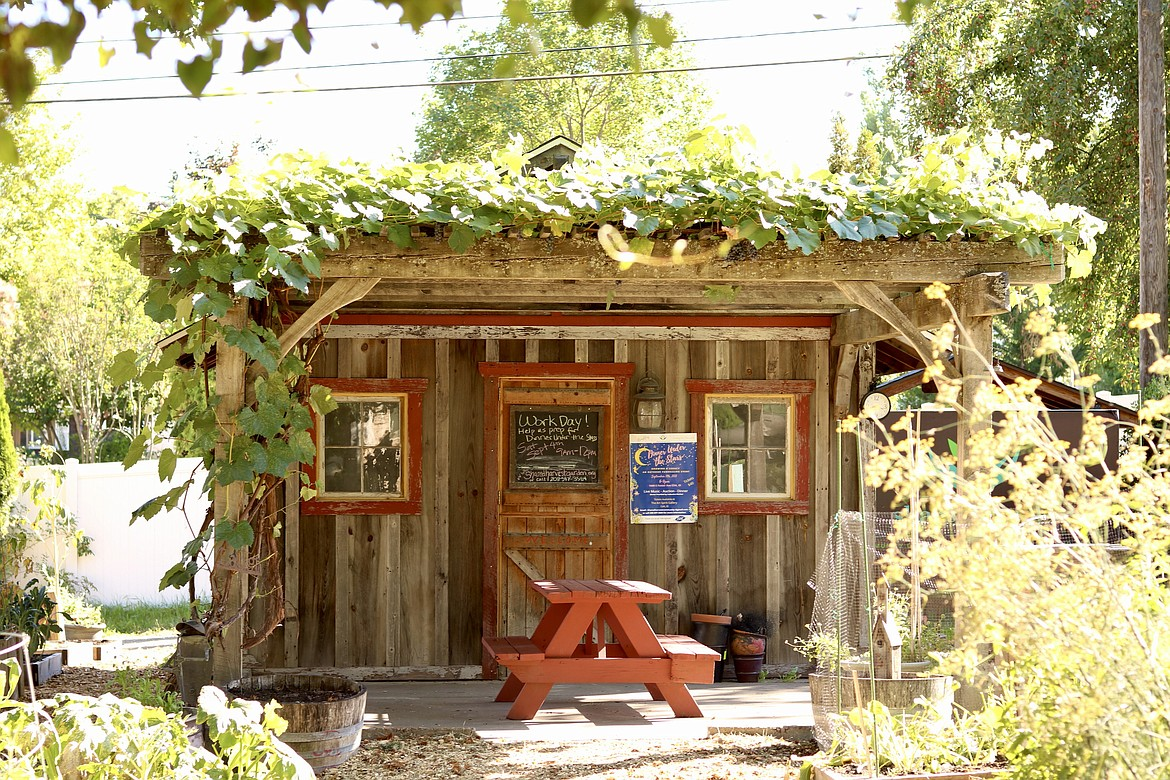 Shared Harvest Community Garden is hosting a fundraising dinner on Sept. 11 from 6 to 9 p.m. in the garden on 10th Street and Foster Avenue. Tickets are $40 and funds will go toward general operation costs. There will be live jazz music, an auction and paddle raise. HANNAH NEFF/Press