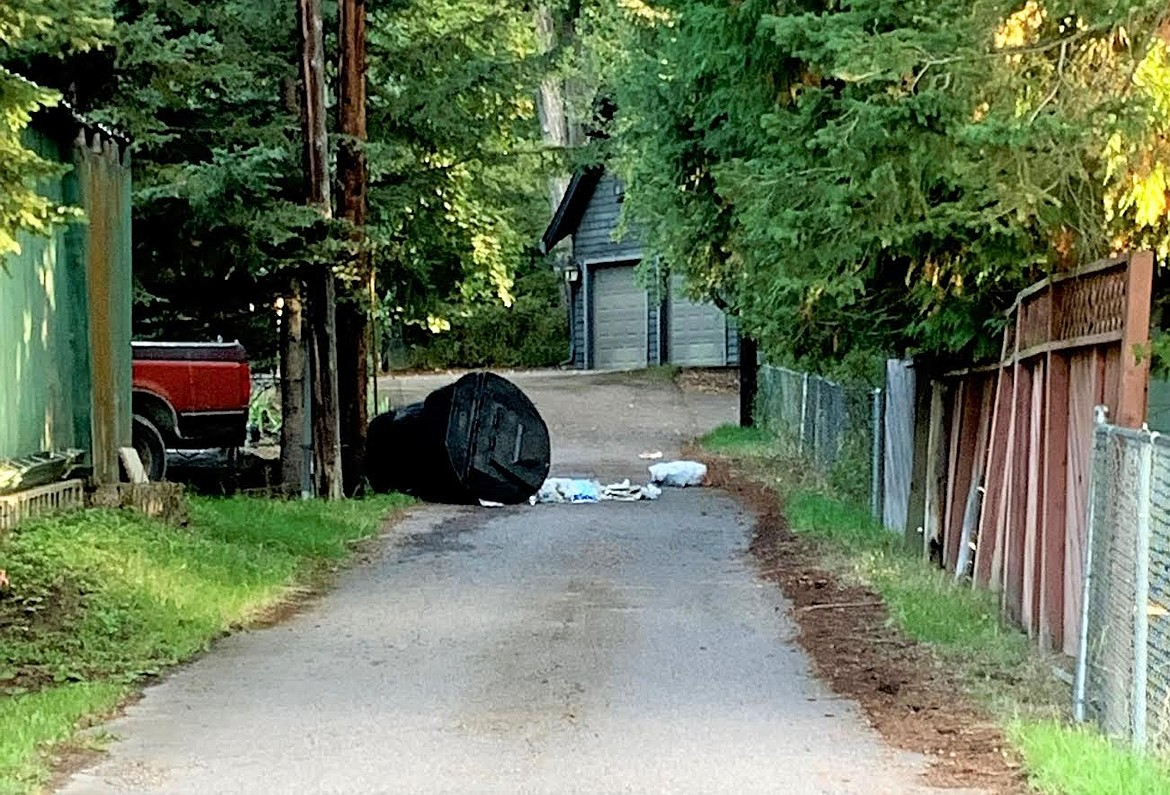 An unsecured garbage can is an easy target for bears to find food. State wildlife officials say bear activity is on the rise in Northwest Montana. Whitefish has reported 19 black bears getting into garbage and eating fruit in its urban center. State officials are urging people to securely store garbage to prevent bear encounters. (Montana Fish, Wildlife and Parks photo)